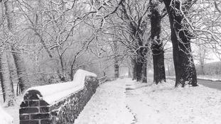 Newmarket snow
