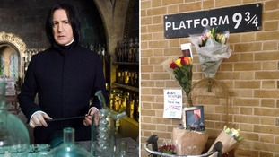 Tributes from Harry Potter fans to Alan Rickman left at King's Cross station