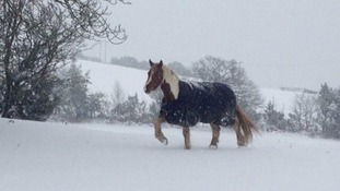 Your pictures: Snow and ice arrives in Wales