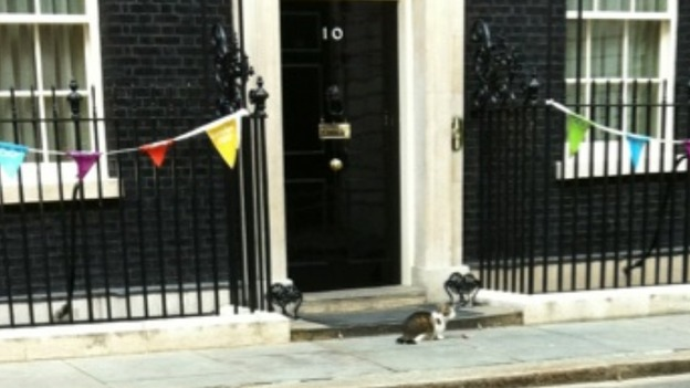 chief mouser to the cabinet office larry