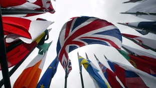 Pro-European Conservatives issue warnings over 'Brexit'