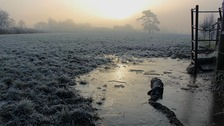 Frost morning in Gloucestershire