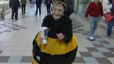 Hull's Bee Lady