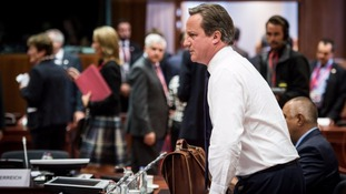David Cameron will use a speech at Davos urging big business to back his EU renegotiation