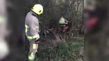 Firefighters help free two deer trapped after getting tangled in rope in Essex.