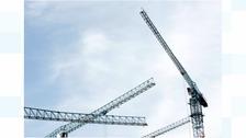 General shot of cranes