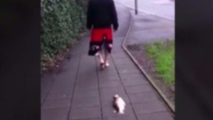 A man took a dead fish for a walk on a lead around Kent