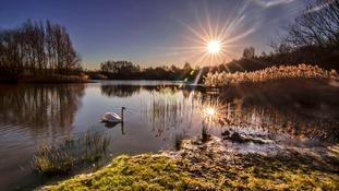 Saturday morning at Walton Colliery Nature Park, Wakefield MICHIKO SMITH