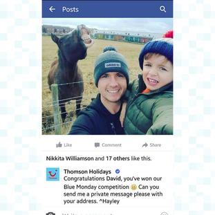 Horse selfie winner