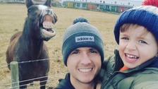 Crowdfunding page set up for family in horse photobomb row