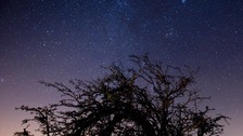 Lookout for constellations in the night sky this weekend