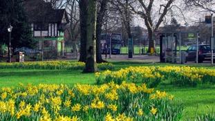 Simon's Blog - Is It Spring Already?