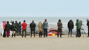 A team of experts carry out a post-mortem on the whale which beached in Norfolk.