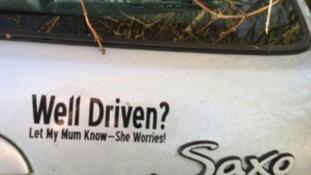 The unfortunate bumper sticker.