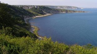 Woman dies after falling from Dorset cliffs