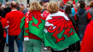 Cardiff rugby fans