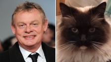Actor Martin Clunes begs police to catch 'Cat Ripper'