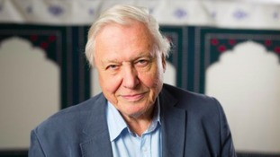 Sir David Attenborough's DNA used in genetics study