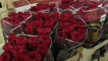 Will you buying red roses?