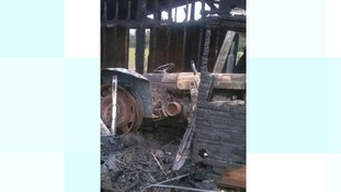 Horse and donkey sanctuary burns down in Norwich