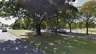 Appeal after woman 'dragged to ground' in park