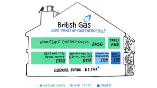 British Gas infographic based on 2015 results