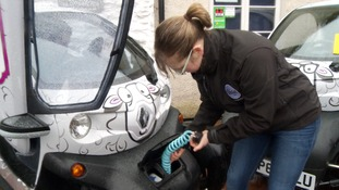 Electric sheep cars flock to Lakeland businesses