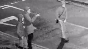 Appeal after 30 cars drop-kicked in 'vandalism spree'