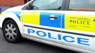 South Yorkshire Police seized the dog and arrested its owner