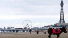 "Blackpool Council are amongst those who impose ""bizarre"" rules"