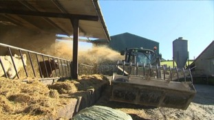 Rural Payment Agency putting farmers' livelihoods at risk with delays to financial support