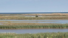 Cley Marshes.