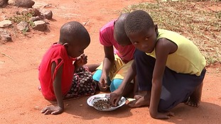 Three children share a bowl of dried worms while their father hunts wild fruit to feed the family.