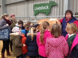 Around 750 primary school children from across Cornwall have been learning about where their food comes from