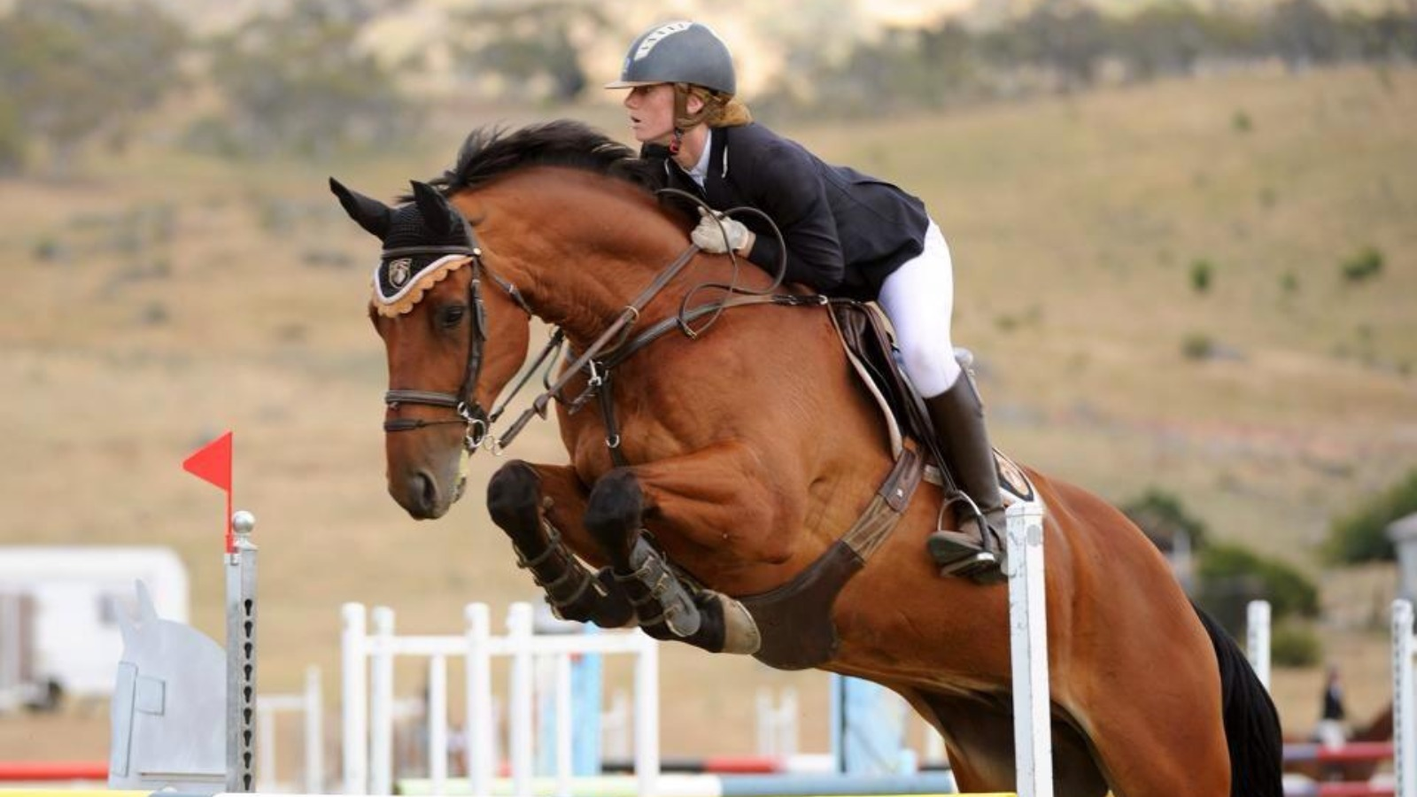 Olivia Inglis Equestrian Star 17 Crushed To Death By