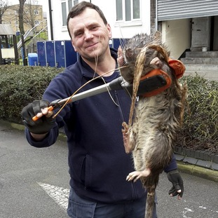 Electrician James Green with the giant rat