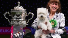 Marie Burns from Co Durham with Geordie Girl, also known as Devon, a West Highland White Terrier, who won the coveted title of Best in Show