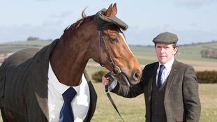 Racehorse dons Harris Tweed suit for Cheltenham
