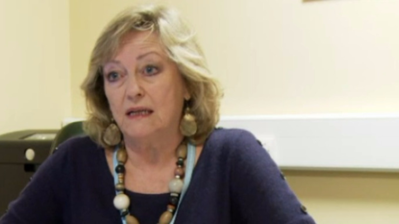 Kent Police And Crime Commissioner Ann Barnes Will Not