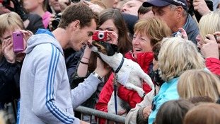 Andy Murray has his face licked by a dog