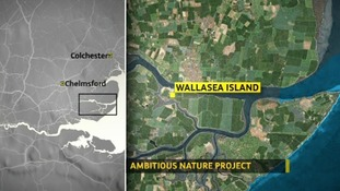Map of Wallasea Island
