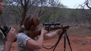 A female hunter takes aim at a wildebeest during the hunt.