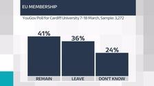 EU poll gfx