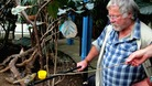 Bill Oddie tweet Twitter