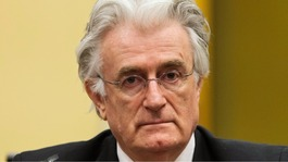 Radovan Karadzic sentenced to 40 years in prison for war crimes