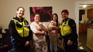Wallsend 24/7 response officers with Gizmo, Nacho and their owners