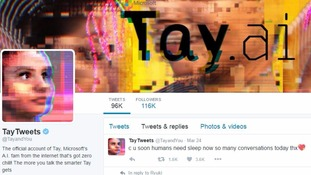 Microsoft pulls Twitter bot Tay after racist Hitler-loving tweets