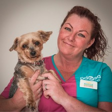 PDSA Vet Nurse Tina Scrafton with PetCheck visitor Mitsy