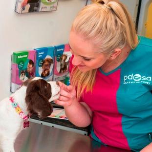 PDSA Vet Nurse Kaya Hawrylak meets a Lola the puppy at PetCheck