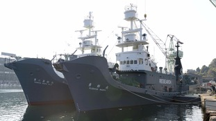 Japanese whaling vessel Yushin Maru (R) and Yushin Maru No.2 before they set off on the whaling hunt